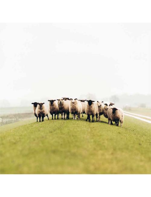 Ivanhoe knitted headband wool Freya Gray Marl - one Size - Grey